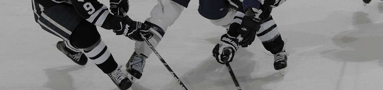 Hockey Knee Braces