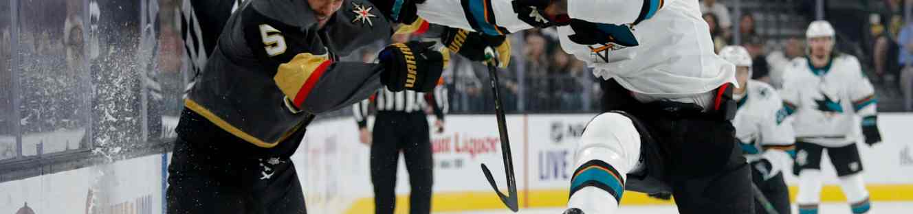 Hockey Wrist Braces