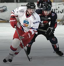 Hockey Ankle Braces