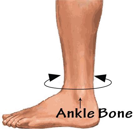 fla prolite 3d ankle support