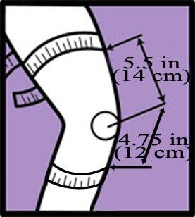 thigh and calf