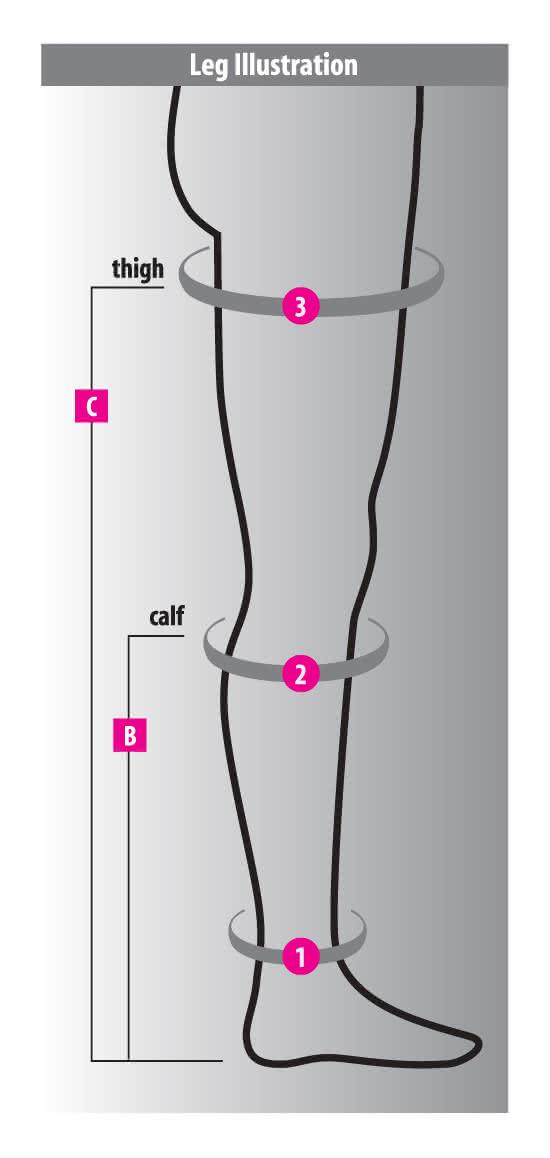 fla leg