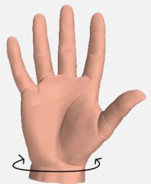 Wrist circumference